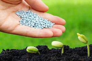 NPK Fertilizer Supplier